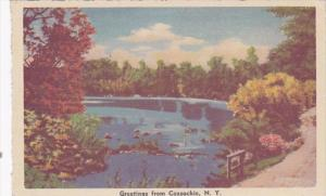 New York Greetings From Coxsackie 1960 Dexter Press