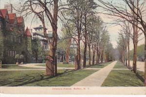 BUFFALO, New York, PU-1908; Delaware Avenue