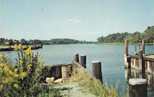 Onancock Virginia Public Docks and Boat Ramp Chesapeake Postcard JD933968