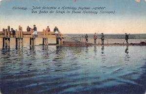 Hortobdgy Hungary~Long Dock~Bathing of the Sheep in River~1908 Postcard