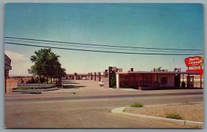 Postcard Albuquerque NM c1964 Oasis Lodge Route 66  Roadside Old Cars Defunct