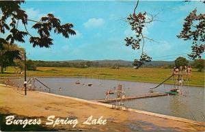 Blountsville Alabama~Burgess Spring Lake Swimming Pool~Platform~Slides~1960s PC