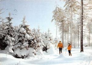 Frohe Wiehnachten und ein gutes Neues Jahr Skiers Sport Trees Forest