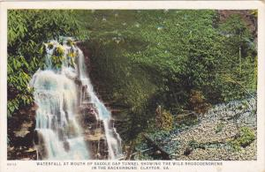 CLAYTON, Georgia; Waterfall at Mouth of Saddle Gap Tunnel showing the Wild Rh...