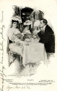 Violets - Artist: Howard Chandler Christy.   Christy Card  (Romance)