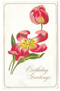 Happy Birthday Tulips Vintage Embossed Flower Postcard