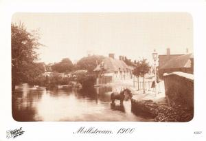 Postcard RINGWOOD Millstream 1900 Hampshire Francis Frith Collection Repro Card