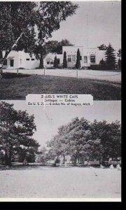 Michigan Detroit Zauels White Caps Cottages Dexter Press Archives