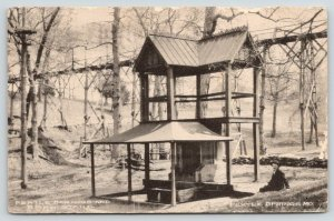 Pertle Springs MO~Man on Bank by Covered Spring~Band Stand~High Bridge~1911 B&W
