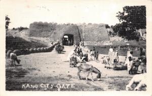 B86485 kano city gate donkey   nigeria africa