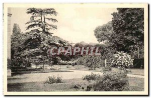 Old Postcard Malmaison Rose Garden And Cedre From Marengo