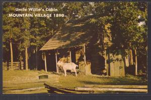 Uncle Willie's Cabin,Mountain Village 1890,Bull Shoals,AR BIN