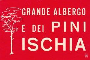 Italy Ischia Grande Albergo Pini Vintage Luggage Label sk2281