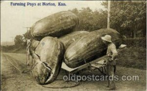 Photo by Wm. H. Martin Norton Kansas USA Exaggeration 1909 light corner wear ...