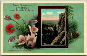 Vintage 1910s SOUTH DAKOTA Postcard State Flower and Greetings Anemone