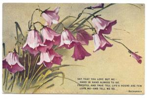 Vintage E Win Motto Postcard Bluebell flowers Buchannon Poem