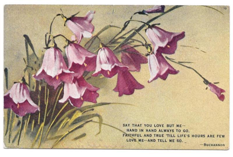 Vintage E Win Motto Postcard Bluebell flowers Buchannon Poem