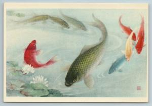 1950s Chinese ART FISH Gold catfish Lotus China for USSR postcard