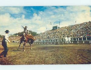 1950's Western GRANDSTANDS AT RODEO hn5935