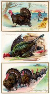 3 - Thanksgiving Cards with Turkeys / Tuck's 123