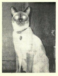 Vintage QSL Postcard   KHJ 9303   Nelsonville, Ohio  Homer & Elizabeth Byrd  -T-