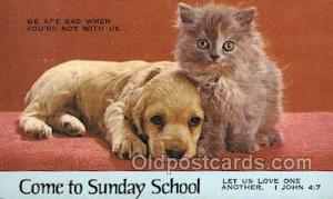 Cat Cats, Old Vintage Antique Postcard Post Card