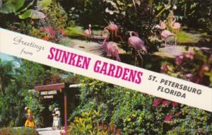 Greetings From The Sunken Gardens St Petersburg Florida