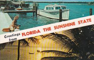 Florida Miami Greetings From Florida The Sunshine State