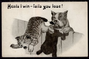 Heads I win Tails You Lose Cat and Dog Comic