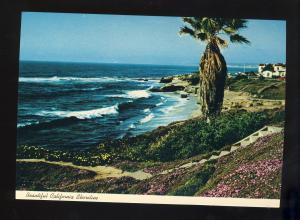California/CA Postcard, Beautiful California Shoreline, Near Mint!