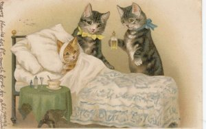 Cat parents tending to sick kitten in bed, PU-1906