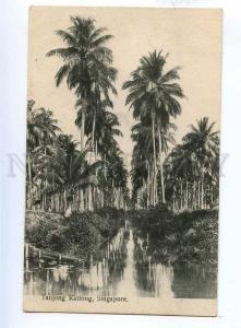 191930 SINGAPORE TAUJONG KATTONG Vintage postcard