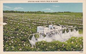 Maine Spraying A Potato Field In Bloom 1947