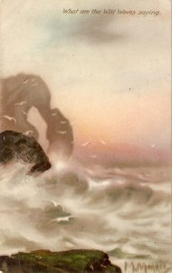 What are  the Wild Waves Saying? Tuck Oilette Connoisseur Ser. PC  # 2987