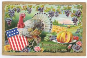 Patriotic Thanksgiving Turkey Flag Shield 1909 Vintage B. Hofmann Postcard