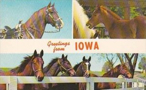 Iowa Greetings From Iowa
