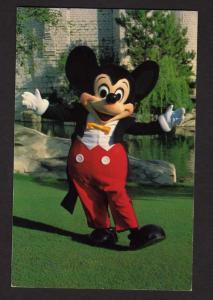 FL Mickey Mouse Walt Disney World, Amusement Park,near Orlando, Florida Postcard