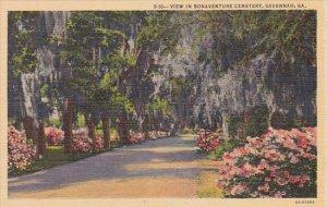 Georgia Savannah View In Bonaventure Cemetery