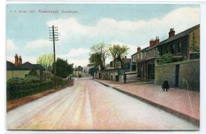 Street Scene Rosemount Dundrum Dublin Ireland 1907c postcard