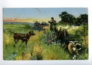 183024 RUSSIA Hunt rabbits dog POINTER summer Vintage postcard