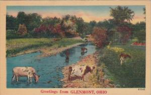 Ohio Greetings From Glenmont