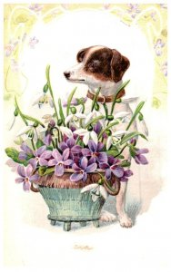 Dog , basket of Flowers