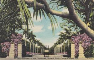 Florida Miami Entrance To Hialeah Race Course 1953 Curteich