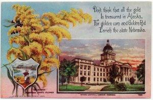 1908 Lincoln Nebraska NE State Capitol & Seal Goldenrod Flower Old DB Postcard