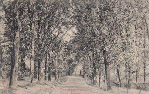 Streatham Common , England , 00-10s ; Avenue
