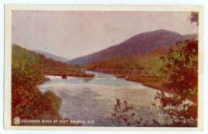 UND/B Delaware River & Bridge at East Branch NY New York