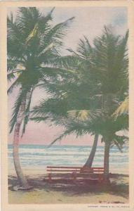 Beach , Trinidad , 20-40s