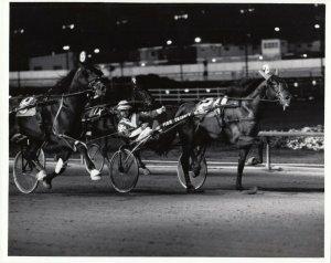 SPORTSMAN'S PARK Harness Horse Race , FIRM TRIBUTE winner, 1970-80s