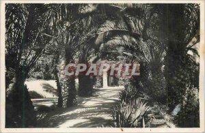 Modern Postcard Alger Park Galland