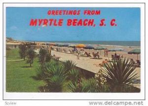 Umbrellas On Strand, Myrtle Beach, South Carolina, 1961